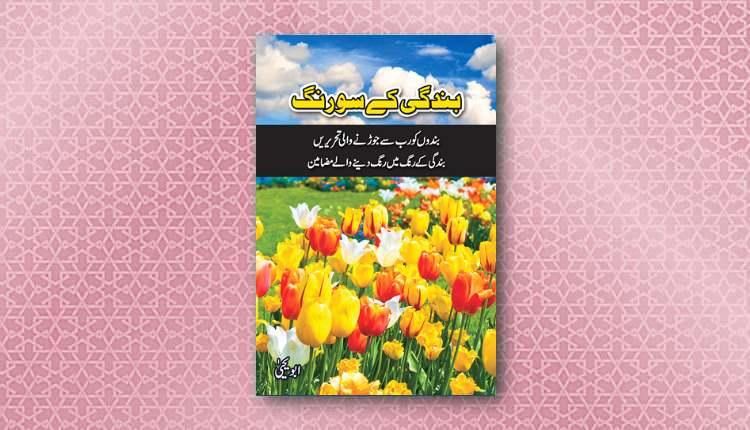 bandagi kay sau rang abu yahya inzaar download pdf